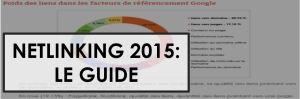 netlinking 2015 guide